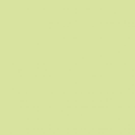 CANDLE AVOCADO GREEN 29X2.2CM 12 Pack CC 02342230