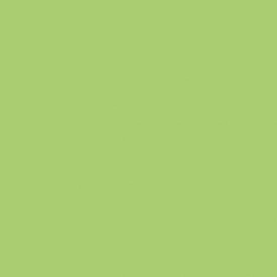 CANDLE LAUREL GREEN 29X2.2CM SINGLE CC CS-02212230-1